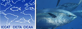 International Commission for the Conservation of Atlantic Tunas ( ICCAT)